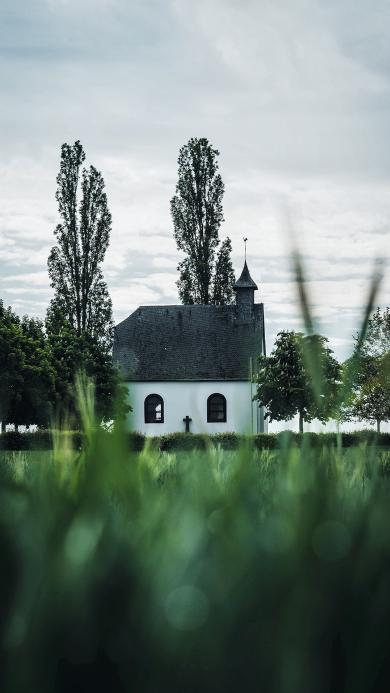 草地 建筑 教堂 十字架 信仰