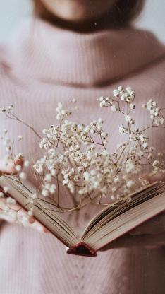 静物 书籍 干花 满天星