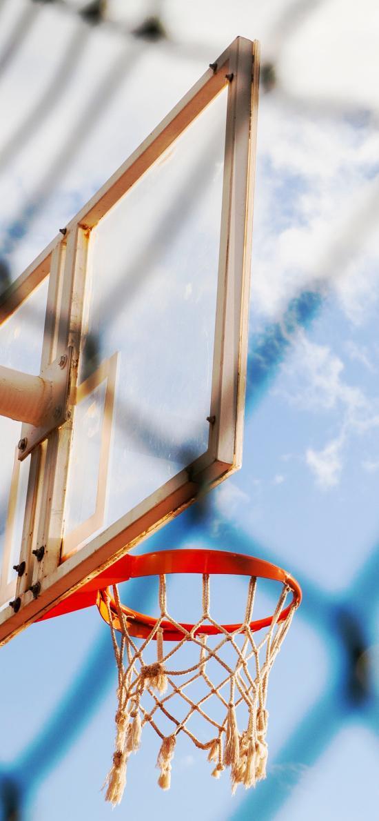 篮球 球框 篮球架 运动 天空 网