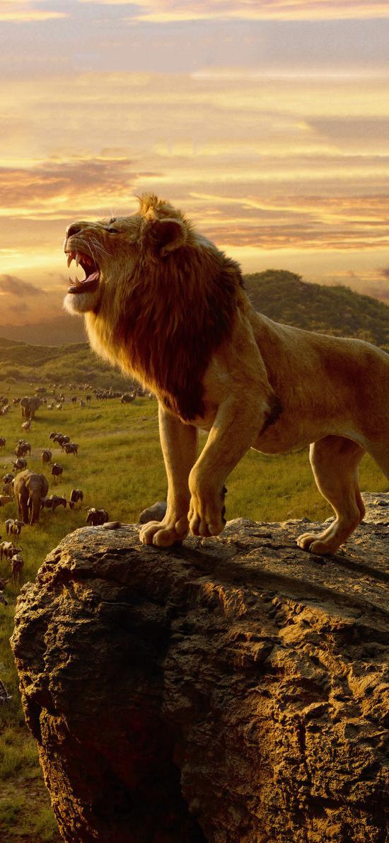 狮子王 电影 欧美 海报 森林之王