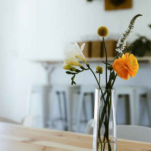 花瓶 静物 鲜花 家居