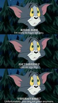 汤姆猫 离开你后真遗憾 活成了你喜欢的样子