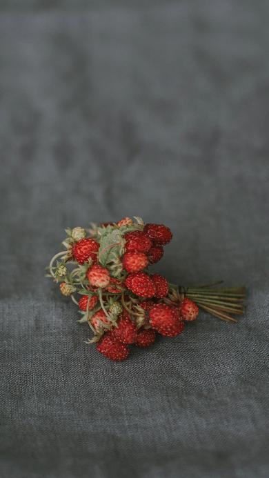桌布 灰色 野果 野草莓