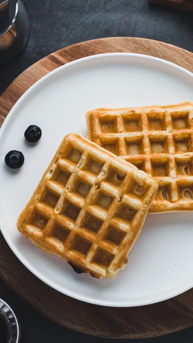 华夫饼 蓝莓 精致 健康