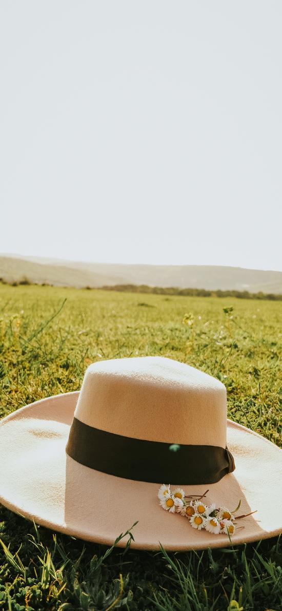 帽子 草地 小花 阳光