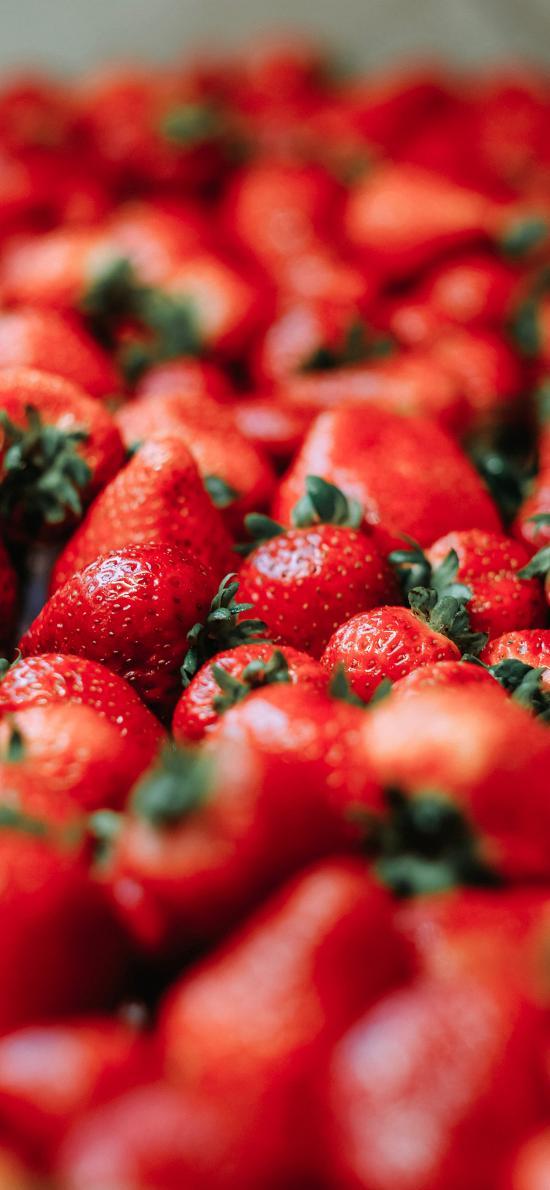 水果 草莓 红色 香甜