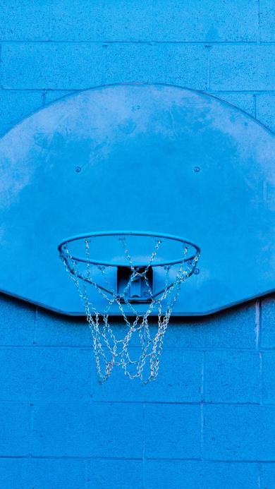 体育 器材 篮球框 蓝色