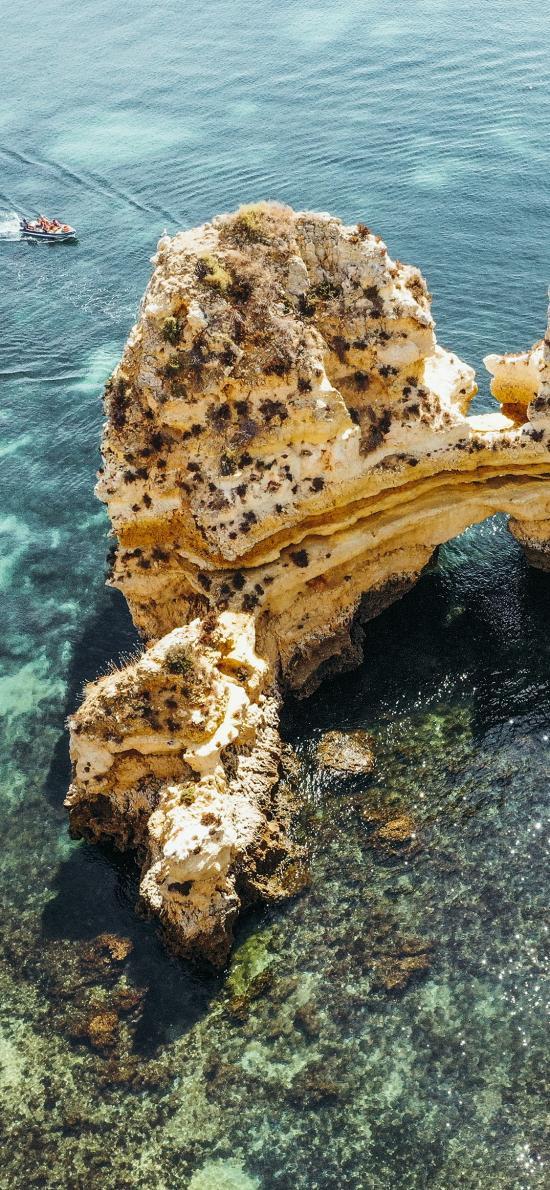 海水 礁石 珊瑚礁 清澈