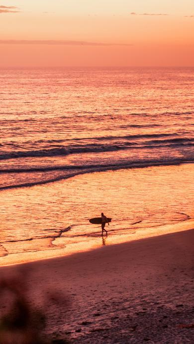 黄昏 沙滩 海岸 冲浪 运动