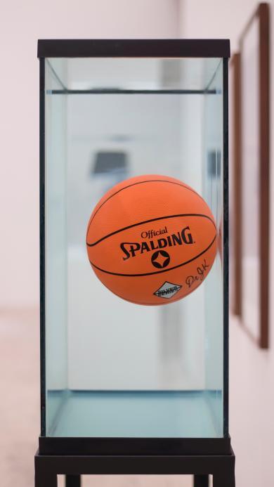 展柜 玻璃柜 运动器材 篮球 悬浮
