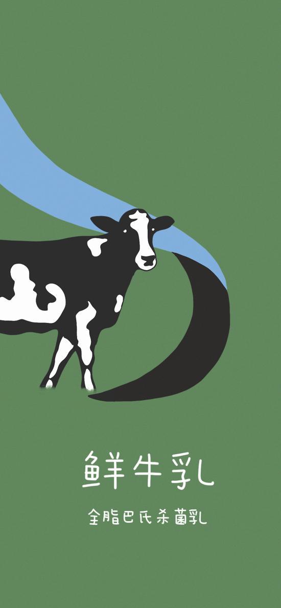 奶牛 鲜牛乳 全脂 巴氏杀菌