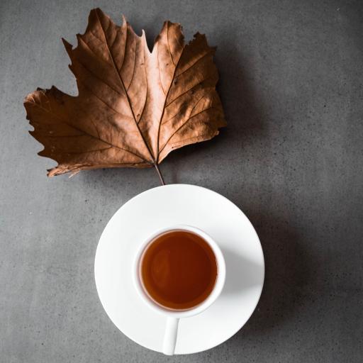 饮品 茶饮 红茶 枫叶 枯叶