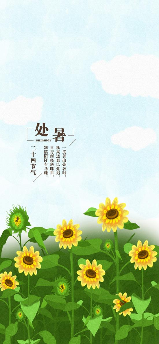 处暑 二十四节气 向日葵 插画