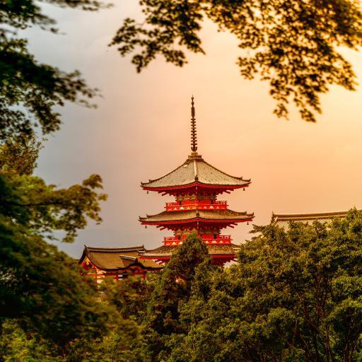 浅草寺 日本 寺庙 景点