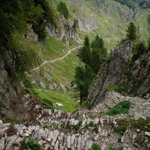 高山 荒野 石块 树木