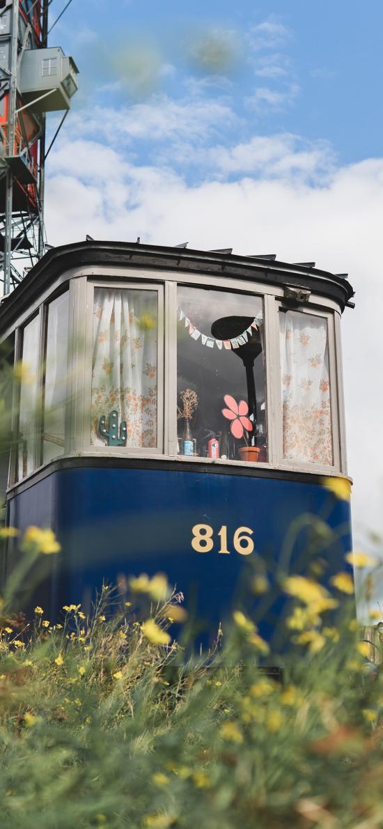 藍天白云 廢棄列車 鮮花 風景