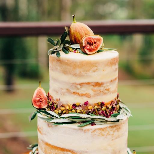 烘焙 甜品 蛋糕 无花果