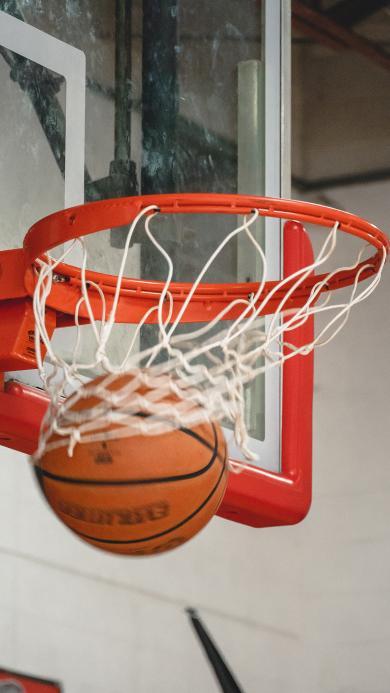 篮球 球框 运动 球场