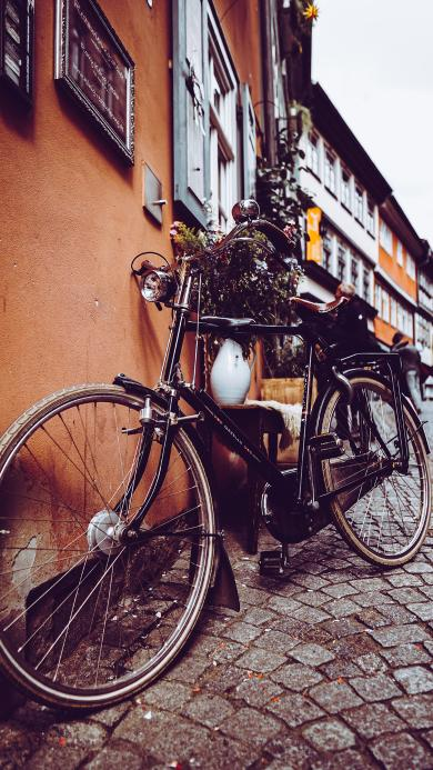 单车 自行车 街道 砖块
