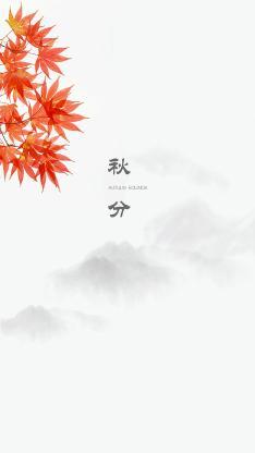秋分 秋天 二十四节气 枫叶