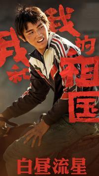 我和我的祖国 白昼流星 陈飞宇 海报