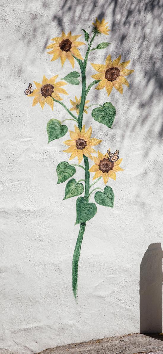 墙绘 向日葵 花 色彩 涂鸦