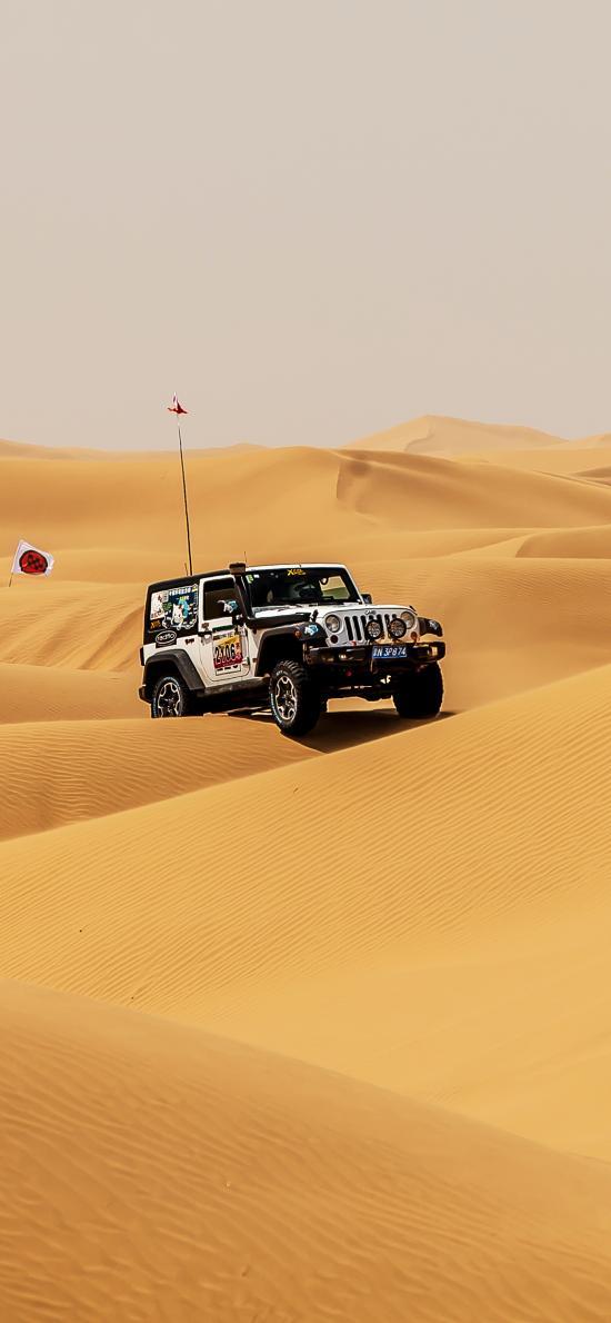 沙漠 越野车 竞技 荒漠