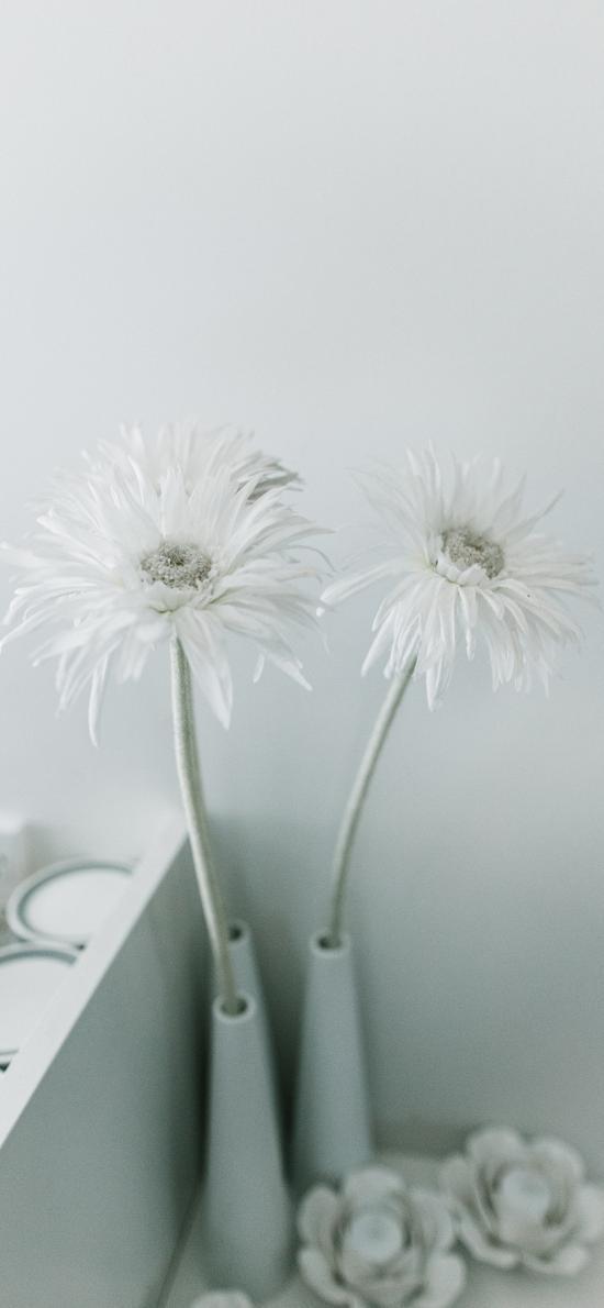 裝飾 菊花 白 簡約 花瓶