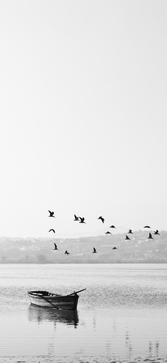 湖泊 自然 船只 飞鸟 黑白 意境