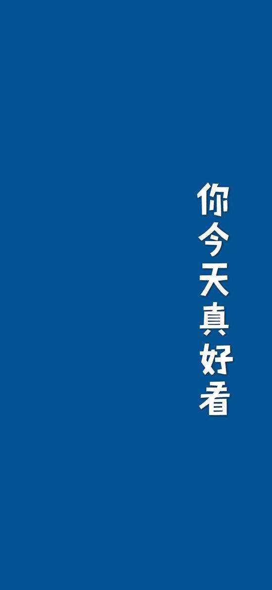 你今天真好看 字体 简约 蓝