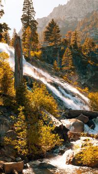 郊外 自然 美景 瀑布 树木