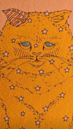 猫咪 插图 黄色 星星