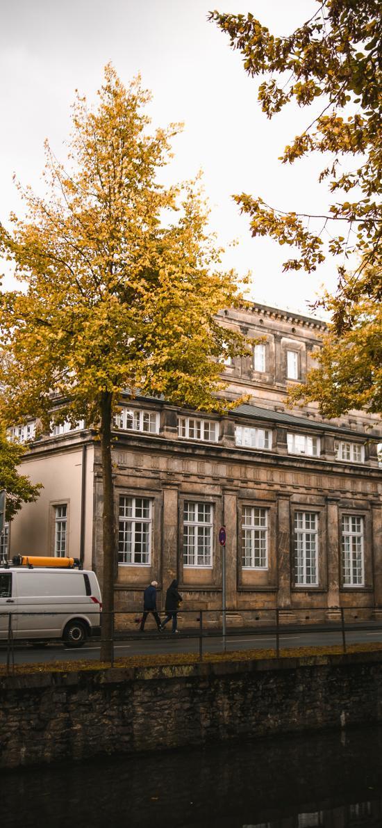 街道 秋季 建筑 树木