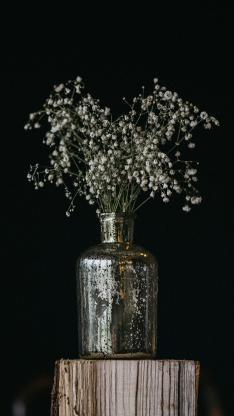 干花 满天星 花瓶 木桩