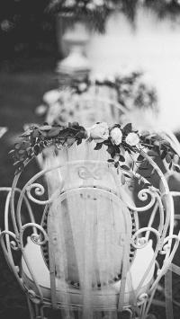 椅子 鲜花 玫瑰花 黑白