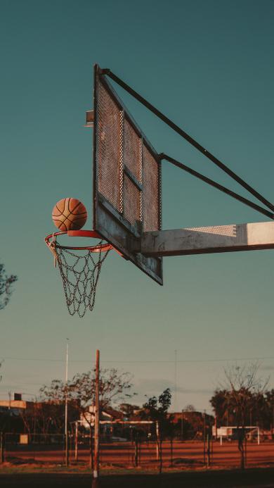 球场 场地 篮球 运动