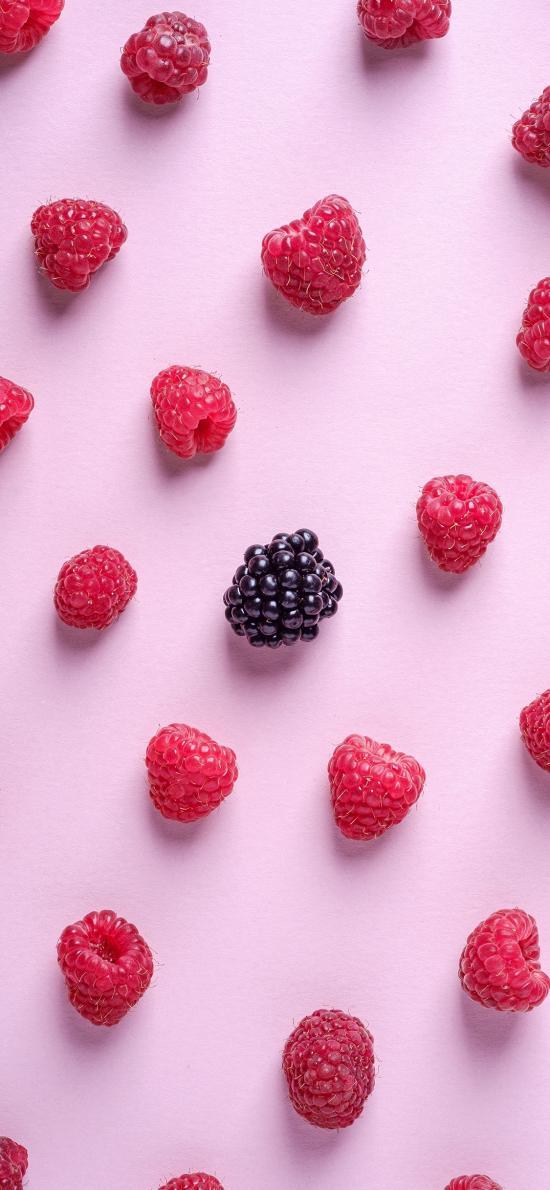 水果 树莓 黑莓 平铺