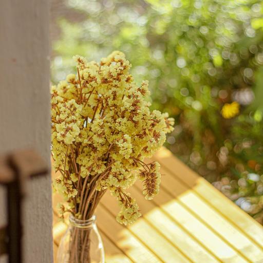 鲜花 花瓶 花簇 阳光