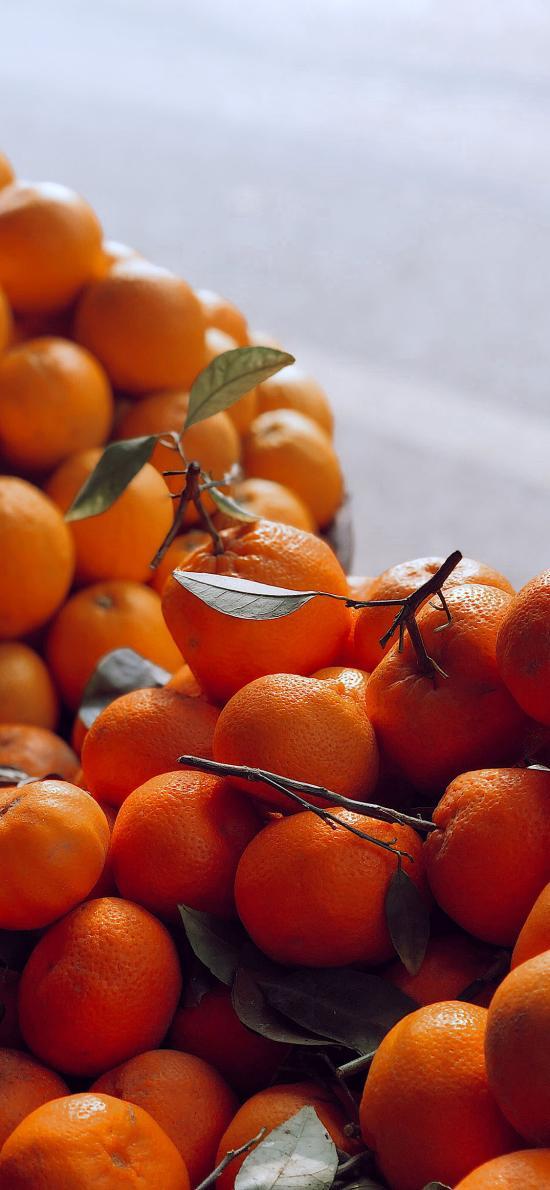 水果 新鲜 句子 柑橘 桔子