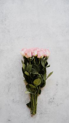 玫瑰 鲜花 花束 枝叶