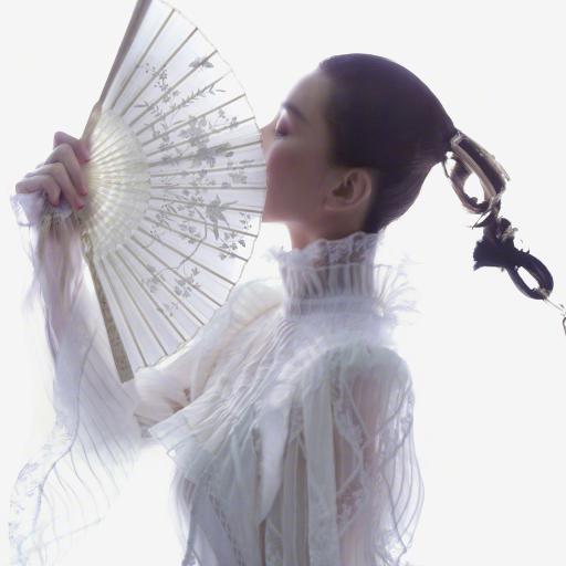 刘诗诗 扇子 演员 明星 写真 金属辫