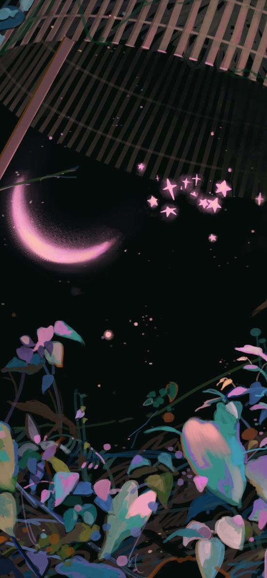 月牙 插画 花草 星星 取自@咸鱼中下游