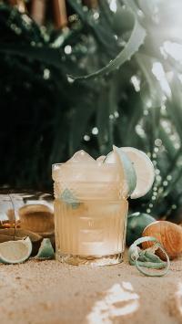 饮品 柠檬 玻璃杯 枝叶