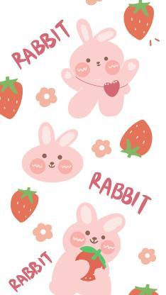 平铺 草莓 rabbit 兔子