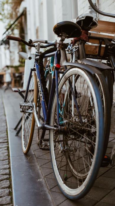 单车 自行车 休闲 骑行