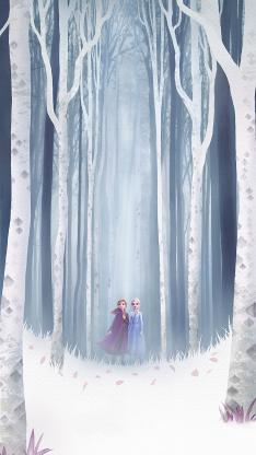 冰雪奇缘2 电影 动画 海报 欧美 Elsa女王 安娜公主