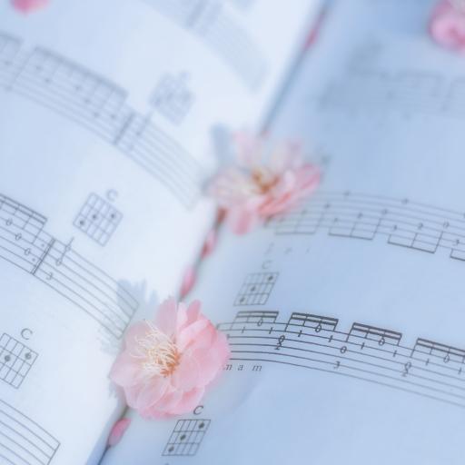 樱花 鲜花 花朵 谱子