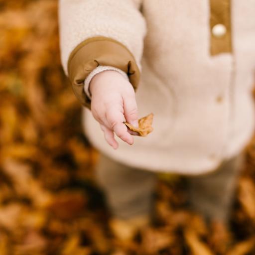 小手 孩子 可爱 落叶 秋天