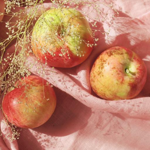 蘋果 滿天星 干花 水果 粉