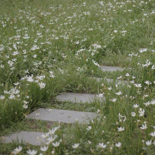 草地 鮮花 道路 綠色 春天 盛開